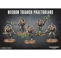 Necron Triarch Praetorians