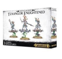 Tzaangor Enlightened