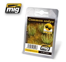 A.MIG-8456 - COMMON SEDGE