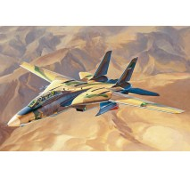 "HobbyBoss 81771 - 1:48 ""Persian Cat"" F-14A TomCat - IRIAF"