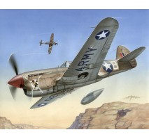 """Special Hobby 72155 - 1:72 P-40 F Warhawk """"Short Tails over Africa"""""""