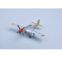 Easy Model 39303 - 1:48 P-51K LT.COL Older 23rd FG
