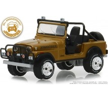 GreenLight 27970-D - 1982 Jeep CJ-7 30th Anniversary Jamboree Solid Pack - Anniversary Collection Series 7