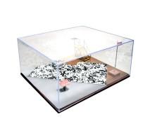 MasterTools 09849 - Diorama Display Case