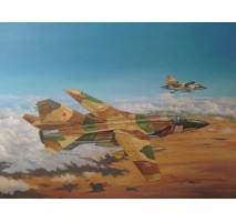 Trumpeter 02855 - 1:48 Russian Mig-23ML Flogger-G